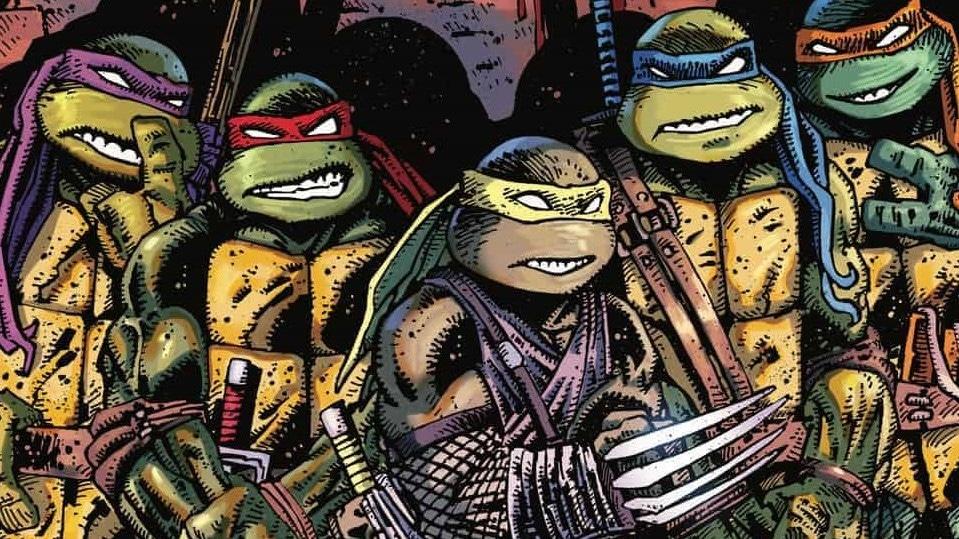 New Teenage Mutant Ninja Turtles Movie By Seth Rogan